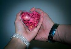 Coeur en verre avec les fleurs rouges à l'intérieur du ` s de femmes et de la main du ` s d'hommes Photographie stock libre de droits