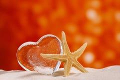Coeur en verre clair avec des étoiles de mer Images libres de droits