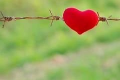 Coeur et barbelé rouges Photos libres de droits