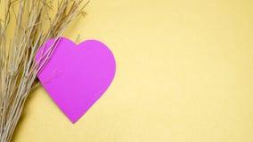 Coeur et branche de papier photos libres de droits