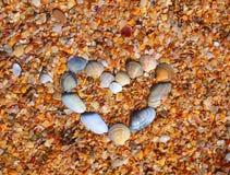 Coeur et effectué des sea-shells sur la plage Images stock