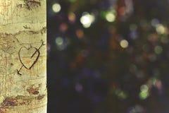 Coeur et flèche découpés dans le tronc d'arbre Photographie stock
