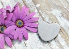 Coeur et fleurs Images libres de droits