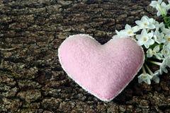 Coeur et jonquilles blanches Photos libres de droits