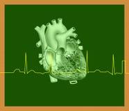 Coeur et ligne d'ECG Image stock