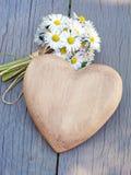 Coeur et marguerites Image stock