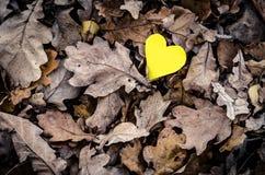 Coeur et nature jaunes Photos libres de droits