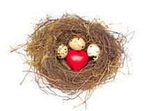 Coeur et oeufs dans le nid Image libre de droits