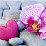 Coeur et orchidée roses Image stock