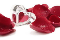Coeur et pétales de rose Photo stock