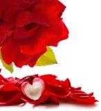 Coeur et pétales de rose d'amour Photos stock