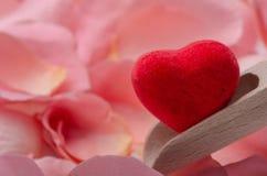 Coeur et pétales de rose rouges Images libres de droits