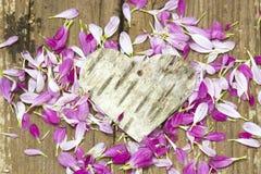 Coeur et pétales rustiques d'écorce de bouleau Photos libres de droits