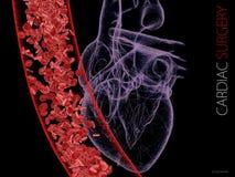 Coeur et veine humains avec des globules sanguins Graphiques polygonaux illustration 3D illustration libre de droits