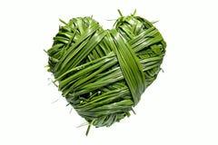 Coeur fabriqué à la main d'herbe photos libres de droits
