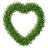 Coeur fait à partir du congé vert Photos stock