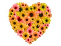 Coeur fait de fleurs colorées sur le fond blanc Image libre de droits