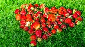 Coeur fait de fraises sur une pelouse verte Image stock