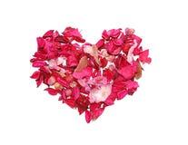Coeur fait de pétales Image stock