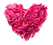 Coeur fait de pétales de pivoine Photographie stock libre de droits