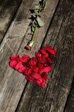 Coeur fait de pétales de rose sur la table en bois Images libres de droits