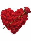 Coeur fait de pétales roses Photos stock