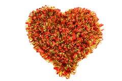 Coeur fait en feston Photos libres de droits