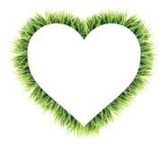 Coeur fait en herbe d'isolement sur le blanc Photo libre de droits
