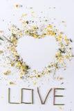 Coeur fait en pétales de fleurs et lettrage d'amour Images stock
