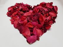 coeur formé avec les pétales de rose rouges Image stock