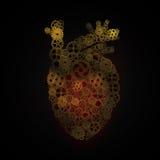coeur, forme de disposition de vitesses de coeur humain Photographie stock libre de droits