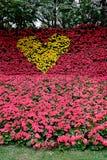 Coeur jaune Photos libres de droits