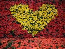 Coeur jaune fait de fleurs Photographie stock