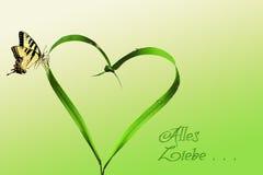 Coeur, lames d'herbe et papillon Photographie stock libre de droits