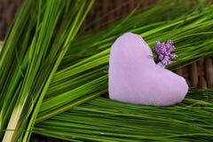Coeur lilas sur l'herbe verte Photos stock