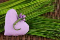 Coeur lilas sur l'herbe verte Photographie stock