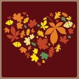 Coeur multicolore d'automne Photographie stock