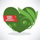 Coeur organique Image stock