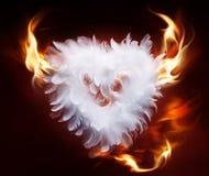 Coeur pelucheux mou d'art Photographie stock libre de droits