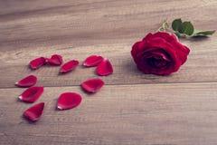 Coeur romantique de rose et de pétale de rouge Photographie stock