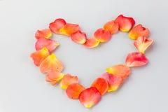 Coeur romantique des lames de roses Photo stock