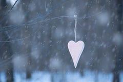 Coeur rose accrochant une branche Photographie stock