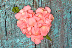 Coeur rose de pétale de rose avec la feuille de fougère Photo libre de droits