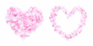 Coeur rose de pétales Photo stock