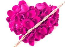 Coeur rose fait à partir des pétales de rose d'isolement sur le fond blanc Photographie stock