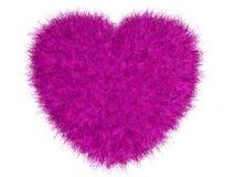 Coeur rose velu Photographie stock libre de droits