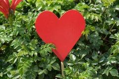 Coeur rouge à l'usine Photographie stock