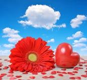 Coeur rouge avec la fleur de gerbera sur le conseil en bois Photo stock