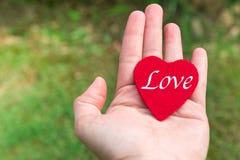 Coeur rouge avec le mot d'amour à disposition sur les milieux d'herbe verte avec l'espace de copie Photos stock