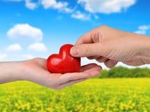 Coeur rouge chez des mains de la femme et d'homme Images libres de droits